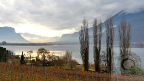 Lago-Caldaro-Vigneti.tramon